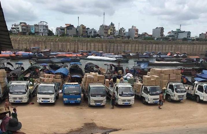 Thuê xe tải 5 tạ chở hàng giá rẻ, chất lượng