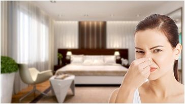 Bật mí cách trị ẩm mốc trong phòng và khử mùi hôi nhanh